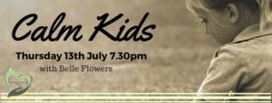 CALM KIDS banner (1)